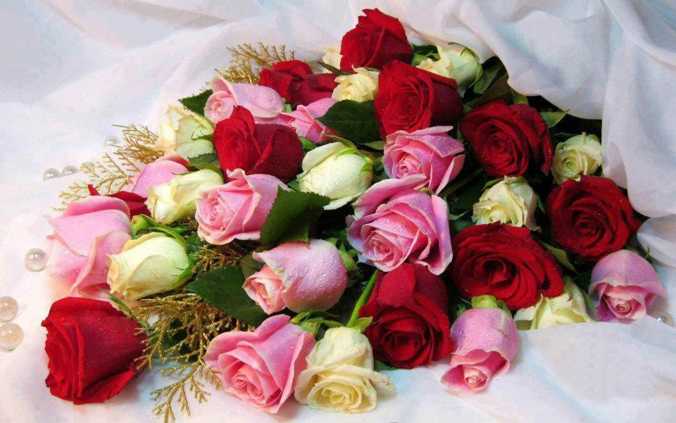 fotos de ramos de rosas gratis